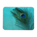 Metallic Aqua Blue Peacock Feather Magnets