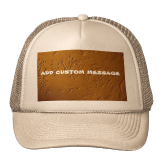 Metallic Bronze Hat