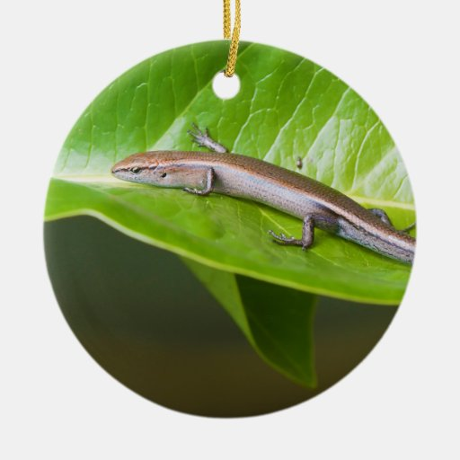 Metallic Cool Skink Niveoscincus Metallicus Double-Sided Ceramic Round Christmas Ornament