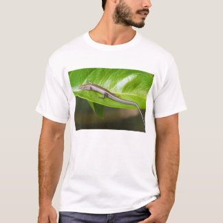 Metallic Cool Skink Niveoscincus Metallicus T-Shirt
