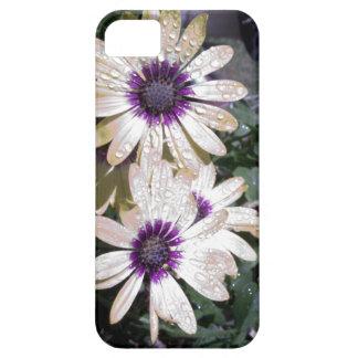 Metallic daisies iPhone SE/5/5s case