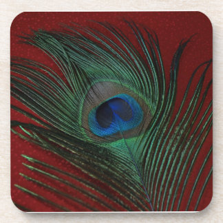 Metallic Red Peacock Feather Still Life Coasters