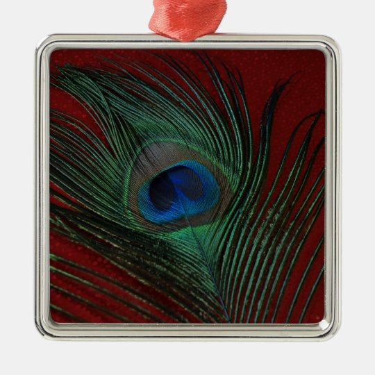 Metallic Red Peacock Feather Still Life Metal Ornament