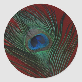 Metallic Red Peacock Feather Still Life Classic Round Sticker