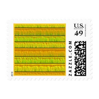 Metallic Satin Yellow Orange Lime Green Stamp