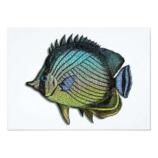 Metallic Striped Tropical Butterfly Fish Card