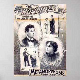 Metamorfosis de Houdinis Poster