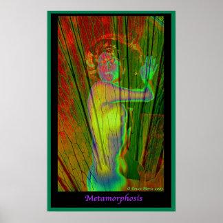 Metamorfosis Posters
