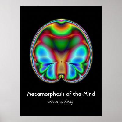metamorphosis in art. Metamorphosis of The Mind Art
