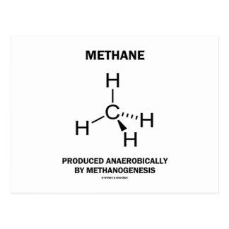 Metano producido anaerobio por Methanogenesis Postales