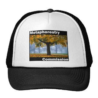 Metaphorestry Commission (box) Mesh Hats