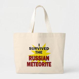 Meteor Survivor Canvas Bags