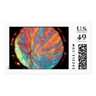 Meteorite SAU 001 thin section Postage Stamp