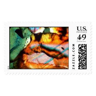 Meteorite. Type Ureilite. Thin section. Stamp