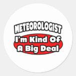 Meteorologist...Big Deal Round Sticker