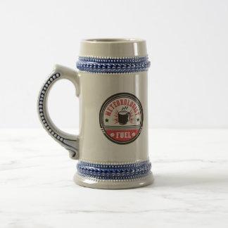 Meteorologist Fuel Beer Stein
