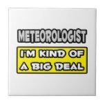 Meteorólogo. Soy un poco una gran cosa Azulejos Ceramicos
