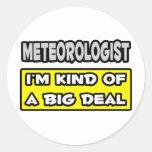 Meteorólogo. Soy un poco una gran cosa Pegatina Redonda