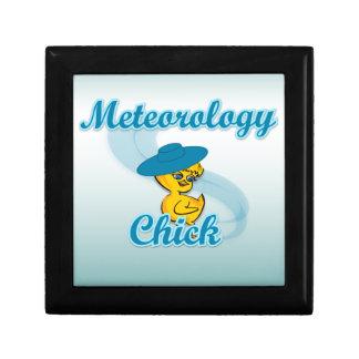 Meteorology Chick #3 Trinket Box