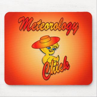 Meteorology Chick #5 Mousepads