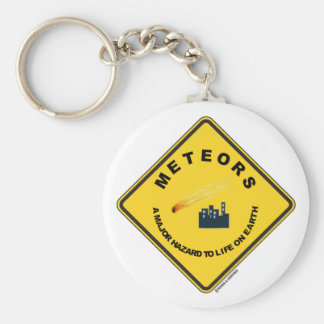 Meteors A Major Hazard To Life On Earth (Sign) Keychain
