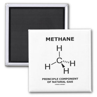Methane Principle Component Of Natural Gas Magnet