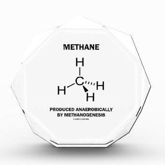 Methane Produced Anaerobically By Methanogenesis Awards