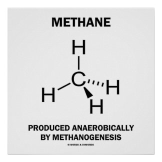 Methane Produced Anaerobically By Methanogenesis Poster