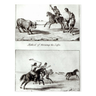 Methods of Throwing the Lasso and the Bolas Postcard