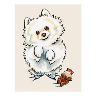 Metida de pata de Pomeranian Postal