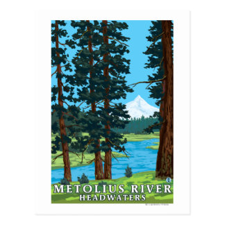 Metolius River Headwaters, Oregon Postcard