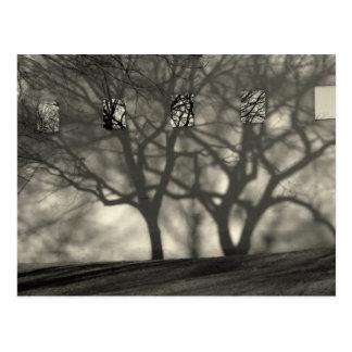 Metropolitan Shadows Postcard