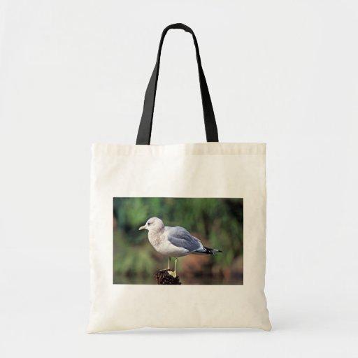 Mew Gull Tote Bags