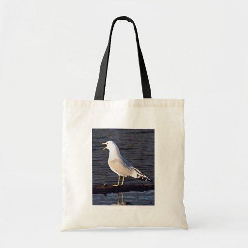 Mew Gull Calling Bags