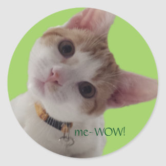 meWOW Curious Cat Good Job Customizable Sticker
