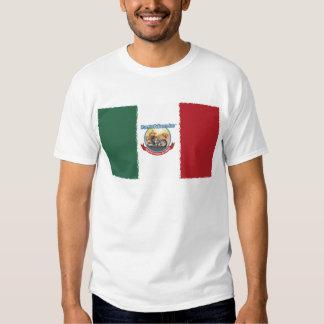 Mexcian Flag T Shirt