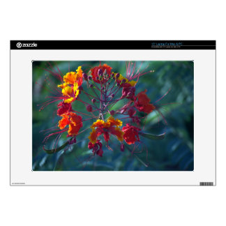 """Mexican Bird of Paradise Laptop Sleeve Decals For 15"""" Laptops"""