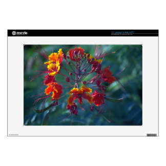 Mexican Bird of Paradise Laptop Sleeve Decals For Laptops