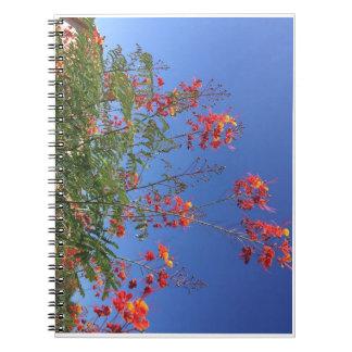 Mexican bird of paradise notebook