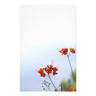 Mexican Bird of Paradise Stationery
