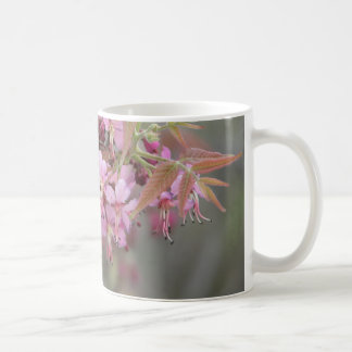 Mexican Buckeye in Bloom Coffee Mug