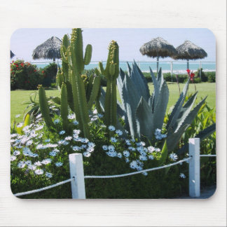 Mexican Cacti Mouse Pad
