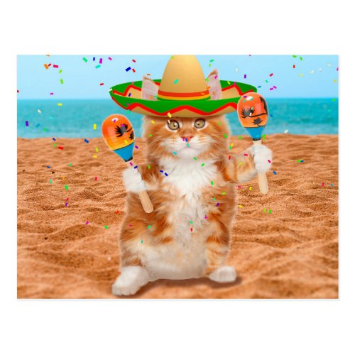 Mexican  cat _cat with maracas _ beach postcard