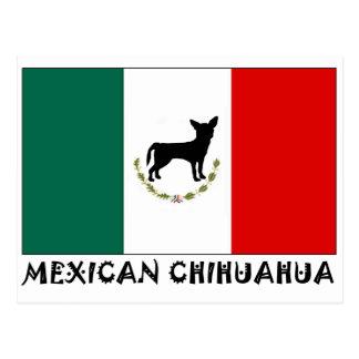 Mexican Chihuahua Postcard