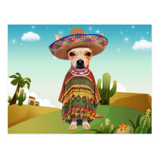 Mexican dog ,chihuahua postcard