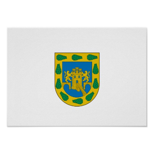Mexican Federal District Print