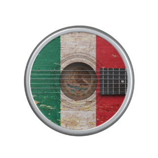 Mexican Flag on Old Acoustic Guitar Speaker