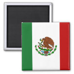 Mexican Flag Refrigerator Magnets