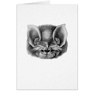 Mexican Funnel-eared Bat Card