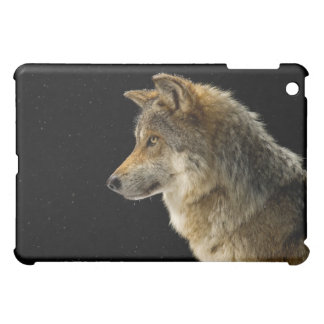 Mexican Gray Wolf Case For The iPad Mini